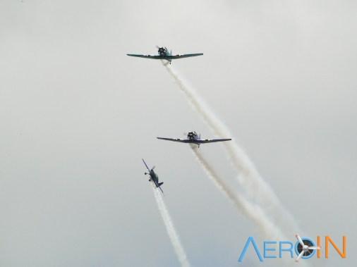 Aeroleme 2015 BR 04