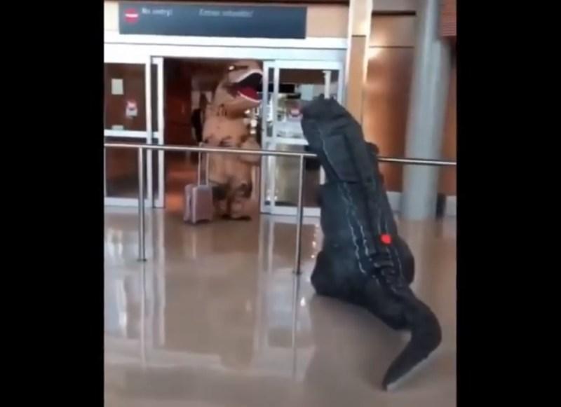 Vídeo Dinossauros Aeroporto Victoria Canadá