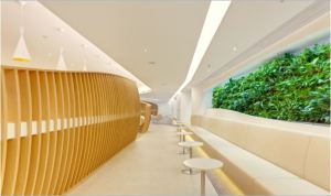 mur-vegetal-skyteam-salon-aeroport