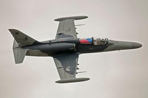 © Duncan Monk • Aero Vodochody L-159 ALCA • RNAS Yeovilton Air Day 2015