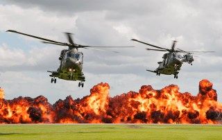 © Duncan Monk - Royal Navy Commando Assault - RNAS Yeovilton Air Day 2016