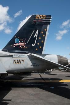 © Duncan Monk - Boeing F/A-18E Super Hornet 166663/AJ 200 Tail - USS George H W Bush CVN 77
