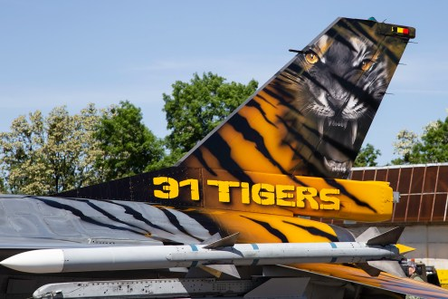 © Adam Duffield - Close up of the Belgian Air Force 31 Squadron special tail - NATO Tiger Meet 2018