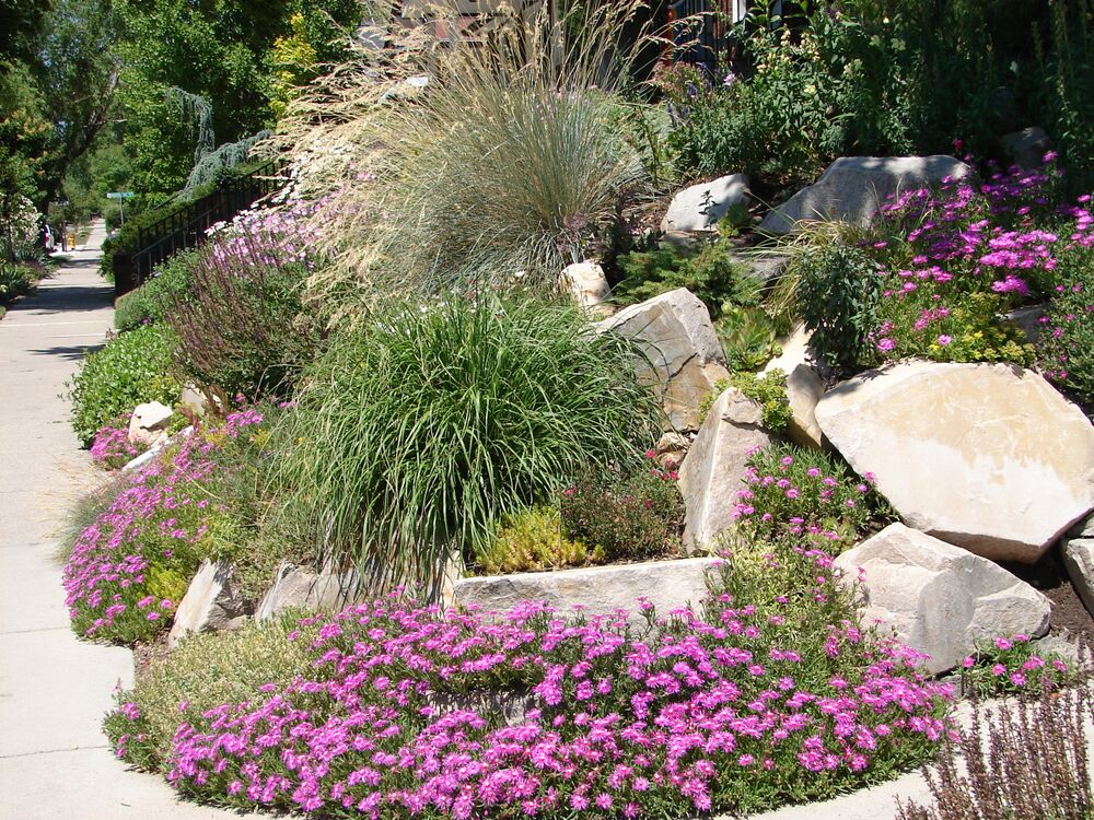 Xeriscaping for Backyard Landscape Designs Salt Lake City ... on Backyard Lawn Designs  id=76855