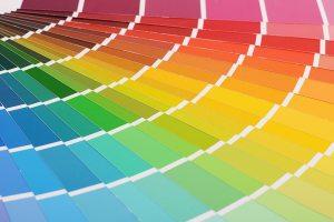 The color palette a background close up
