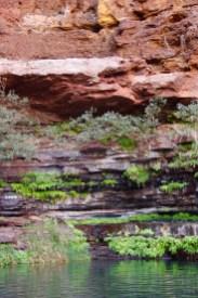 Dales Gorge, Circular Pool