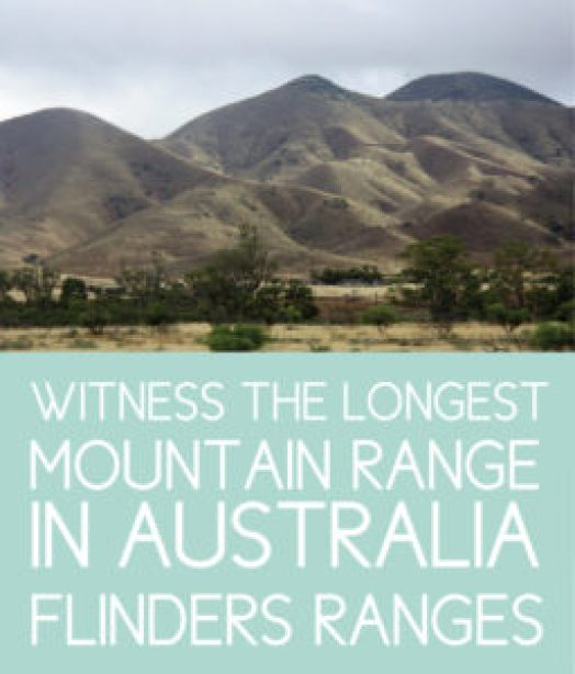 Witness the Flinders Ranges