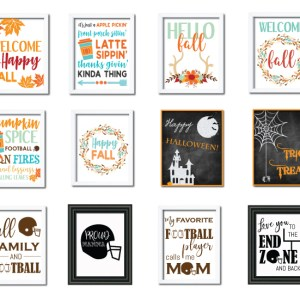Over 40 fall designs for $30