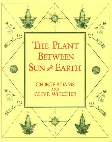 Plant earth sun