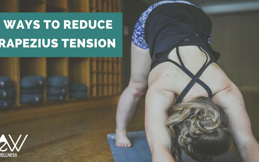5 Ways to Reduce Trapezius Tension