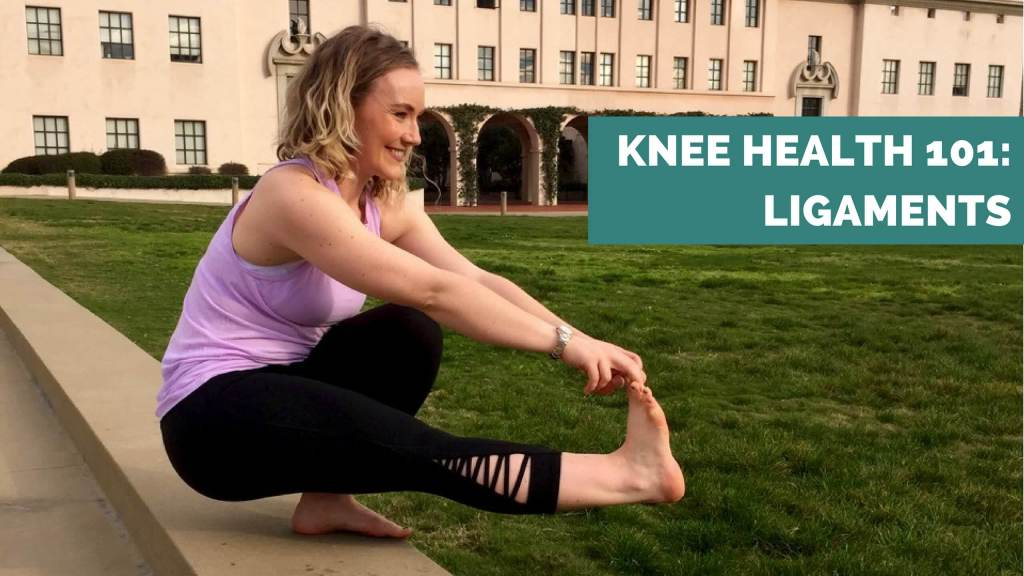 knee health 101 knee ligaments - ae wellness