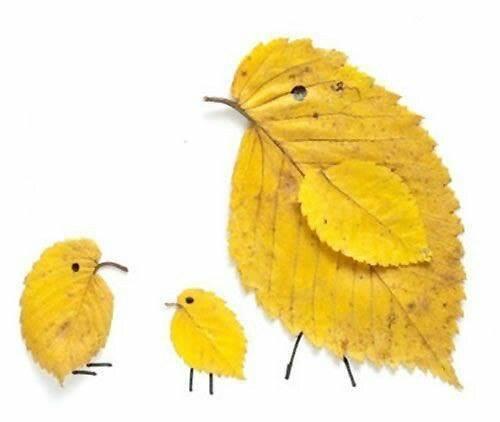 animaux-avec-des-feuilles-arbres-5