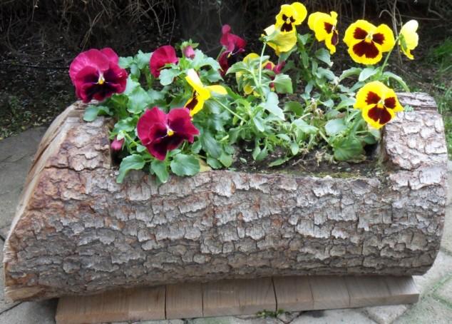 idee-deco-tronc-arbre-4