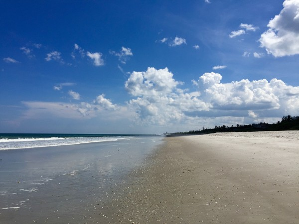 48 Hours on the Florida Space Coast • a farmgirl's dabbles