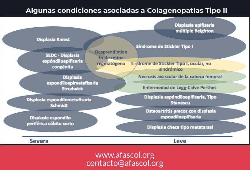COL2A1-Condiciones asociadas