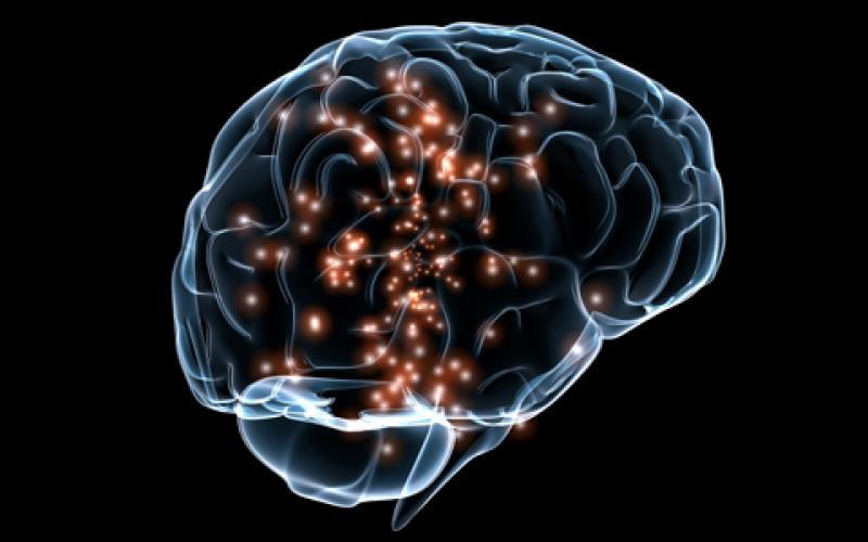 cognitive science AI market research