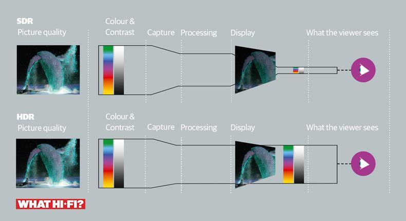 colour_infographic