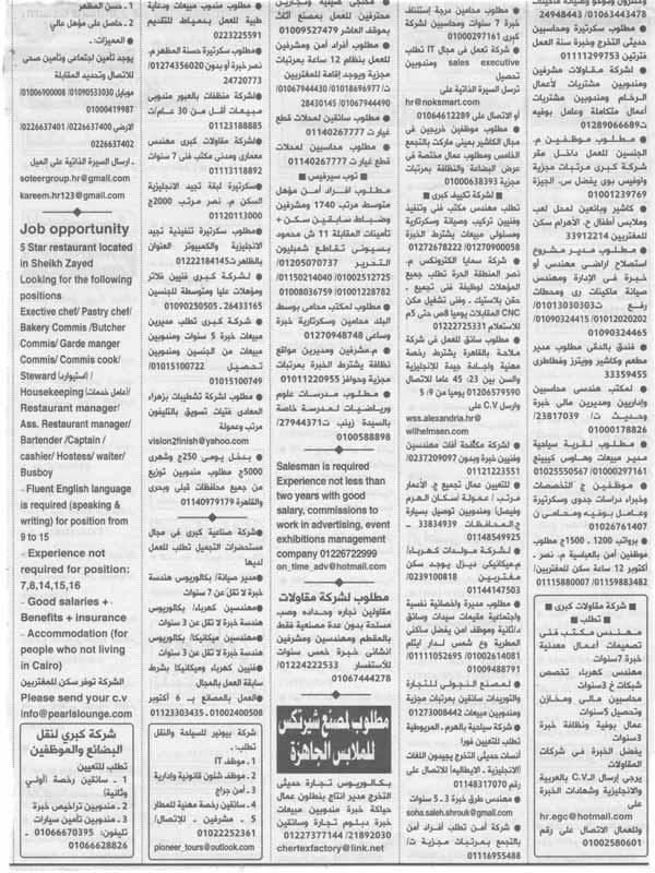 ahram2392016-13