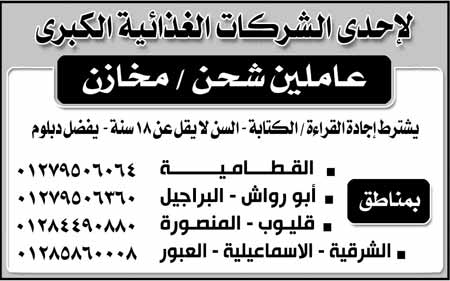 ahram2392016-19