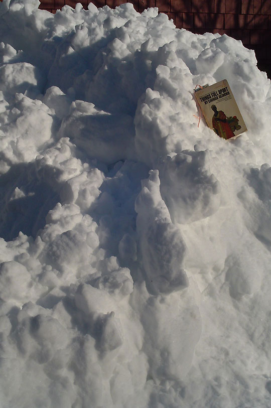20 inches of snow, oh my!