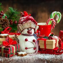 Toute l'équipe de l'AFFB vous souhaite un Joyeux Noël et de belles fêtes de fin d'année en famille !