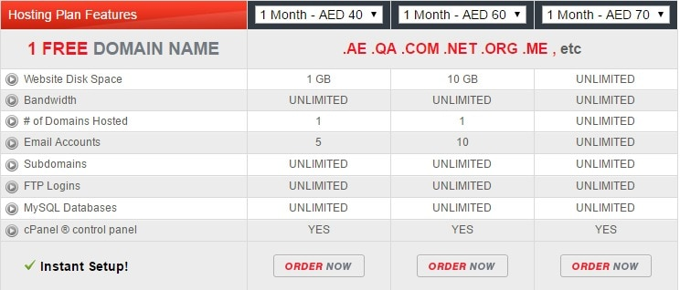 AE serve plans- Best Web Hosting Providers In Dubai UAE