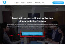 E-commerce Digital Marketing Agency - Growing Brands