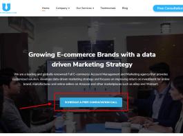 E-commerce Digital Marketing Agency - Growing Brands