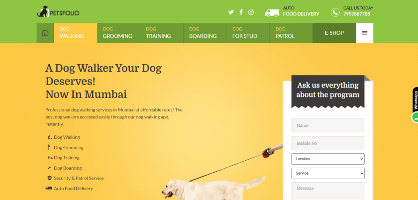 earn money from Dog Walking And Sitting