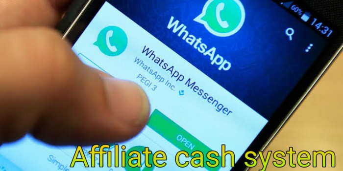 Earn money from WhatsApp