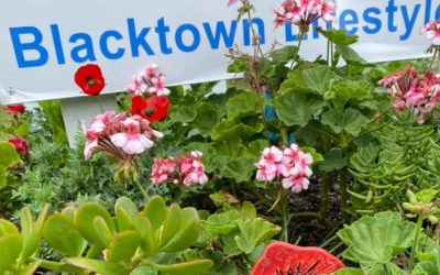 Blacktown Remembers