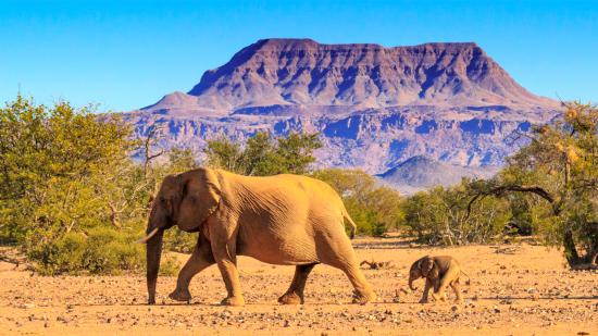 Namibia 10 days self drive