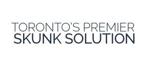 AFFORDABLE SKUNK REMOVAL TORONTO