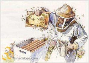beekeeper hive
