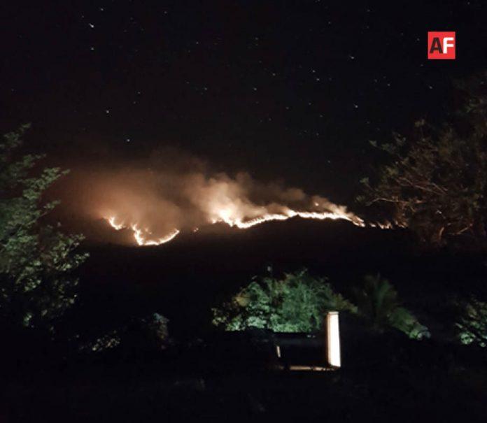 AFmedios Incendio Coahuayana 2 696x605 - Habitantes de Coahuayana y Aquila piden ayuda por incendio en cerro