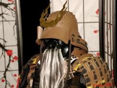 DSC_6831 testa di samurai - afnews