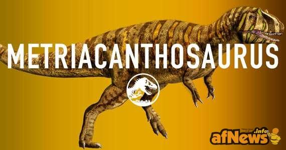 Metriacanthosauro