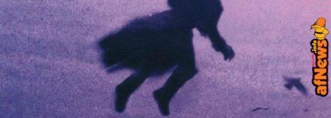 Monster's Shrink, série adaptée du roman L'Éternel de Joann Sfar, sur Canal +