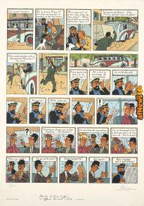Tintin Girasole-afnews