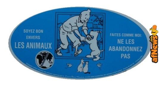 Tintins-l640 2-afnews