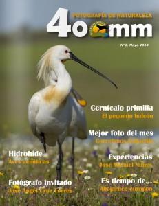 400mm-N2