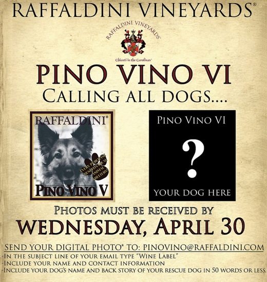 Raffadlini Rescue Dog Wine Label Contest