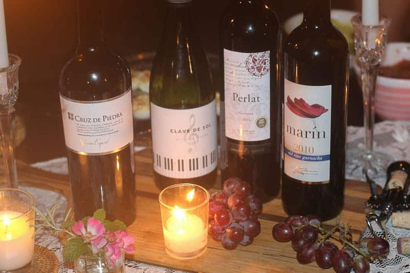 Celebrating International Garnacha Day with Wines of Garnacha