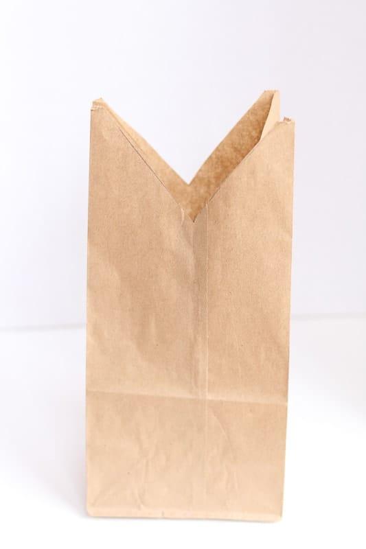 Bunny Paper Bag Cut