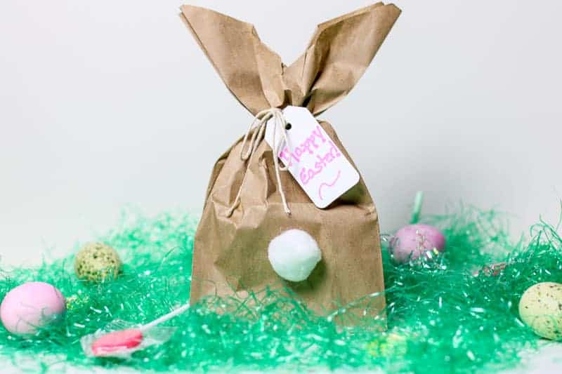 Easy diy easter bunny gift bags need a clever easy easter bunny craft idea how about making these fun easy negle Choice Image
