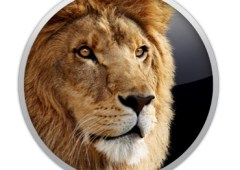 Skinning a Cat: Lots of Ways to Deploy Lion