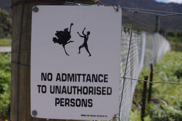 via http://explainafide.deviantart.com/art/Nasty-Ostrich-Sign-267763918