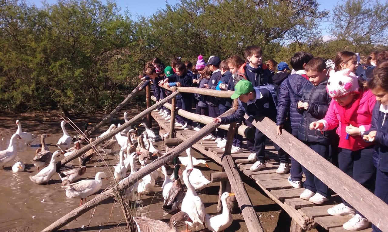 Visita a la Granja «Los Juanes»