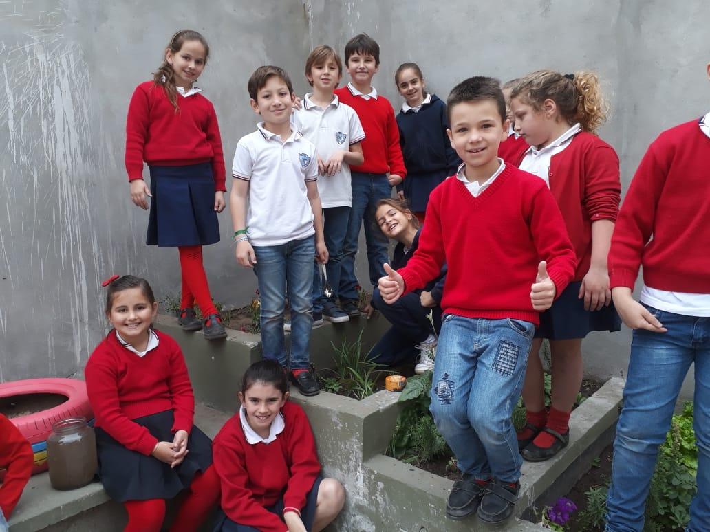 Plantación de plantines