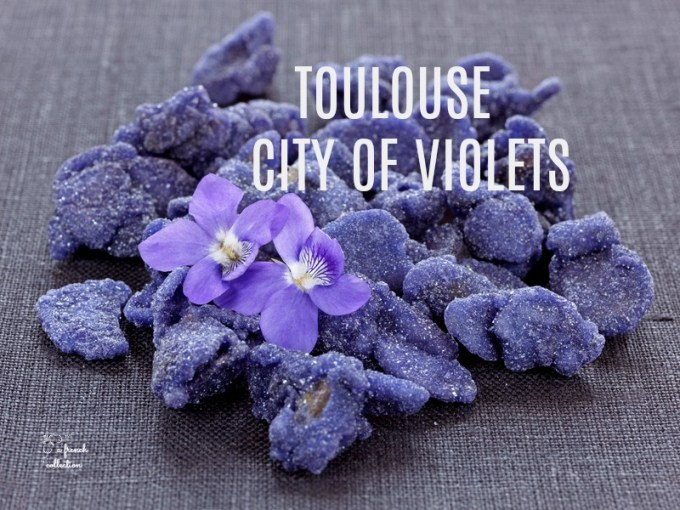 Violets of Toulouse   A French Collection